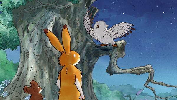 Die kleine Weißeule erzählt dem kleinen braunen Hasen und der kleinen Feldmaus eine Geschichte von einem Stern, der ihr einen Wunsch erfüllt hat. | Rechte: KiKA/SLR Productions Australia Pty.Ltd./Scrawl Studios Pte Ltd./hr/ARD