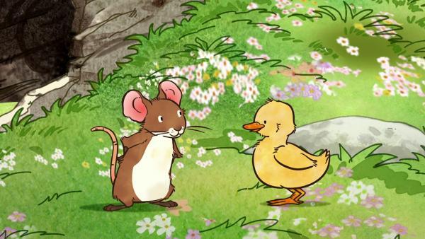 Die kleine Feldmaus fragt sich, was das für ein gelbes Tier ist, das ihr gegenüber steht. | Rechte: KiKA/SLR Productions Australia Pty.Ltd./Scrawl Studios Pte Ltd./hr/ARD