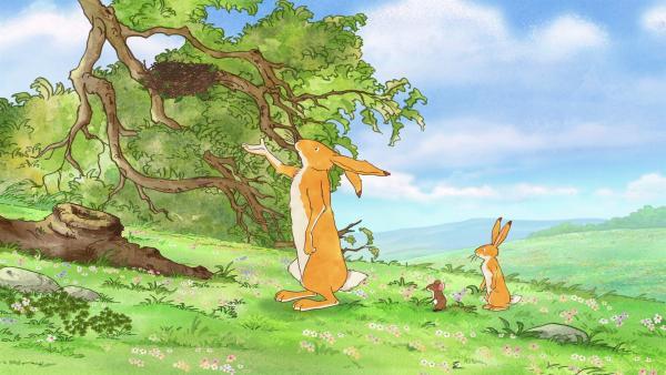 Vielleicht wäre das Nest gut auf dem Baum aufgehoben? | Rechte: KiKA/SLR Productions Australia Pty.Ltd./Scrawl Studios Pte Ltd./hr/ARD