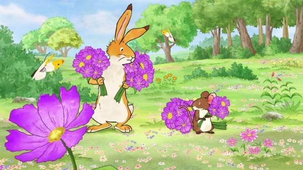 Der kleine Hase und die kleine Feldmaus haben viele Blumensträuße für ihre Freunde gepflückt, die sie gleich überreichen wollen. Da bemerken sie, dass ihnen ein Schwarm Schmetterlinge auf Schritt und Tritt folgt. | Rechte: KiKA/SLR Productions Australia Pty.Ltd./Scrawl Studios Pte Ltd./hr/ARD