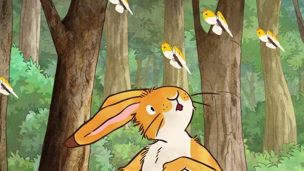 Der kleine Hase wundert sich über all die Schmetterlinge um ihn herum. | Rechte: KiKA/SLR Productions Australia Pty.Ltd./Scrawl Studios Pte Ltd./hr/ARD