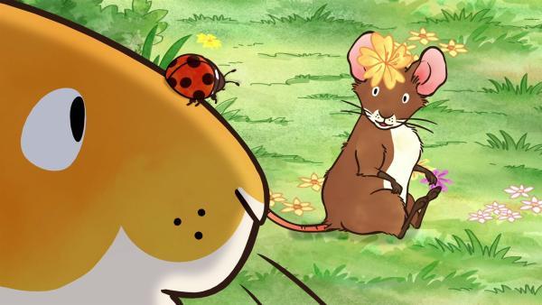 Ein Marienkäfer ist beim kleinen braunen Hasen gelandet und bliebt den ganzen Tag bei ihm. | Rechte: KiKA/SLR Productions Australia Pty.Ltd./Scrawl Studios Pte Ltd./hr/ARD