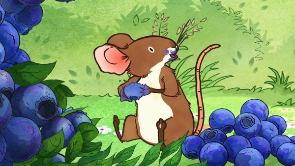 Die kleine Feldmaus hat eine blaue Köstlichkeit entdeckt. | Rechte: KiKA/SLR Productions Australia Pty.Ltd./Scrawl Studios Pte Ltd./hr/ARD