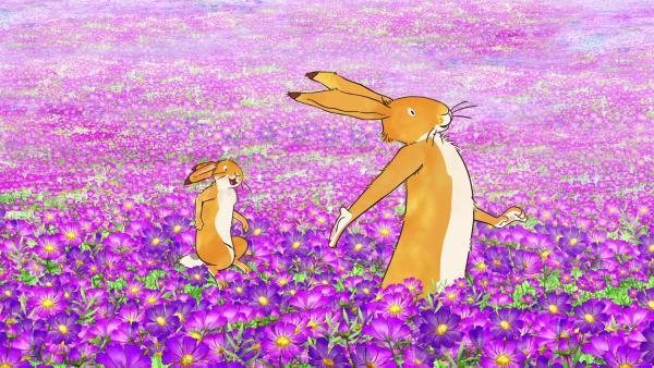 Der große und der kleine braune Hase erfreuen sich an der prächtigen Blumenwiese. | Rechte: KiKA/SLR Productions Australia Pty.Ltd./Scrawl Studios Pte Ltd./hr/ARD