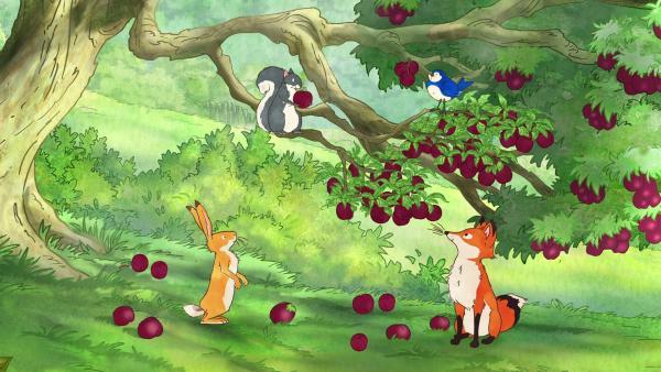 Der kleine braune Hase und seine Freunde genießen die köstlichen Früchte des Pflaumenbaums. | Rechte: KiKA/SLR Productions Australia Pty.Ltd./Scrawl Studios Pte Ltd./hr/ARD