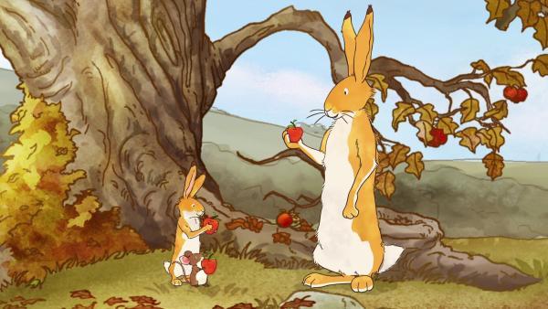 Es ist Herbst geworden. Der kleine braune Hase, die kleine Feldmaus und der große braune Hase freuen sich über die reifen roten Äpfel. | Rechte: KiKA/SLR Productions Australia Pty.Ltd./Scrawl Studios Pte Ltd./hr/ARD