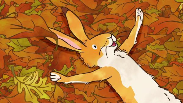 Der kleine braune Hase würde auch gerne wie ein Vogel fliegen können. Er macht eine Trockenübung im Laub. | Rechte: KiKA/SLR Productions Australia Pty.Ltd./Scrawl Studios Pte Ltd./hr/ARD