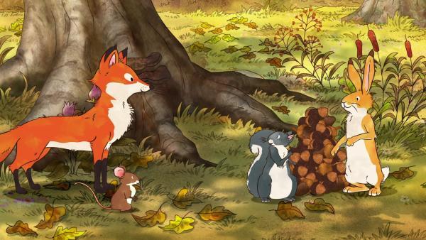 Der kleine braune Hase, das kleine Grauhörnchen, die kleine Feldmaus und die kleine Rotfüchsin spielen Eichelnstapeln.   Rechte: KiKA/SLR Productions Australia Pty.Ltd./Scrawl Studios Pte Ltd./hr/ARD