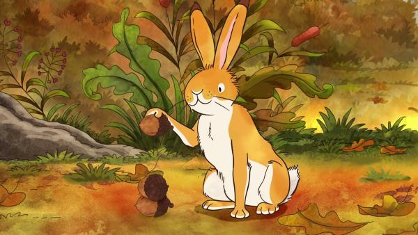 Der kleine braune Hase spielt Eichelnstapeln.   Rechte: KiKA/SLR Productions Australia Pty.Ltd./Scrawl Studios Pte Ltd./hr/ARD