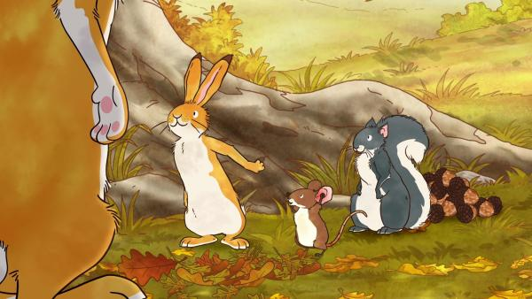 Das kleine Grauhörnchen möchte ein paar Eicheln für den Winter verstauen, aber der kleine braune Hase und die kleine Feldmaus überreden es, mit ihnen spielen zu gehen.   Rechte: KiKA/SLR Productions Australia Pty.Ltd./Scrawl Studios Pte Ltd./hr/ARD