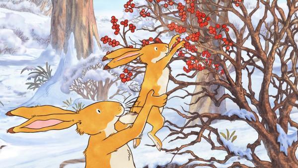 Der große braune Hase hebt den kleinen braunen Hasen hoch, damit er Beeren vom Strauch pflücken kann. | Rechte: KiKA/SLR Productions Australia Pty.Ltd./Scrawl Studios Pte Ltd./hr/ARD