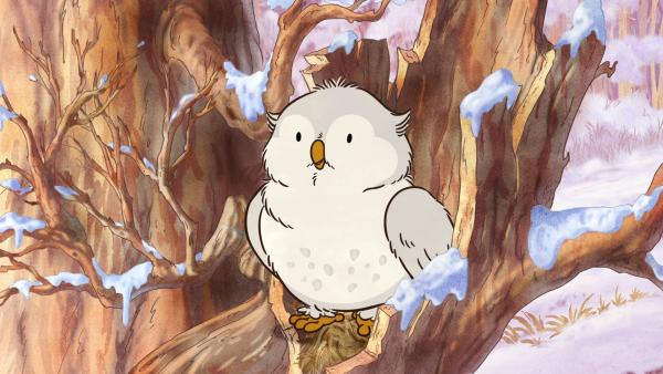 Die kleine Weißeule hat eine interessante Geschichte zu erzählen.   Rechte: KiKA/SLR Productions Australia Pty.Ltd./Scrawl Studios Pte Ltd./hr/ARD
