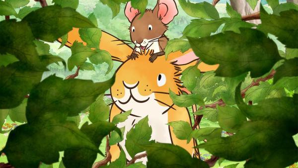 Der kleine Hase und die kleine Feldmaus spielen auf der Wiese Verstecken als sie eine ungewöhnliche Entdeckung machen. | Rechte: KiKA/SLR Productions Australia Pty.Ltd./Scrawl Studios Pte Ltd./hr/ARD