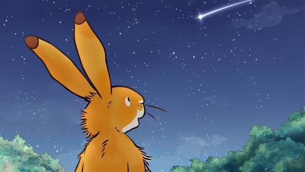 Der kleine Hase genießt die schöne Sommernacht. | Rechte: KiKA/SLR Productions Australia Pty.Ltd./Scrawl Studios Pte Ltd./hr/ARD