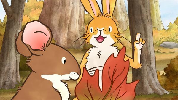 Der kleine Hase und die kleine Feldmaus suchen noch ein ganz besonderes Blatt für die Herbstblätter-Sammlung der kleinen Feldmaus. | Rechte: KiKA/SLR Productions Australia Pty.Ltd./Scrawl Studios Pte Ltd./hr/ARD