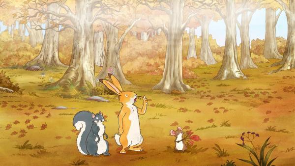 Der kleine Hase, das kleine Grauhörnchen und die kleine Feldmaus suchen den Weg zurück zur Wiese. | Rechte: KiKA/SLR Productions Australia Pty.Ltd./Scrawl Studios Pte Ltd./hr/ARD