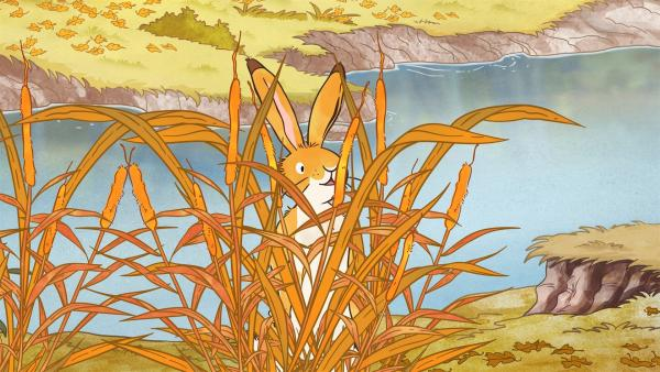 Der kleine Hase versteckt sich.   Rechte: KiKA/SLR Productions Australia Pty.Ltd./Scrawl Studios Pte Ltd./hr/ARD