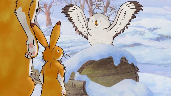 Der große und der kleine Hase treffen die kleine Weißeule. | Rechte: KiKA/SLR Productions Australia Pty.Ltd./Scrawl Studios Pte Ltd./hr/ARD