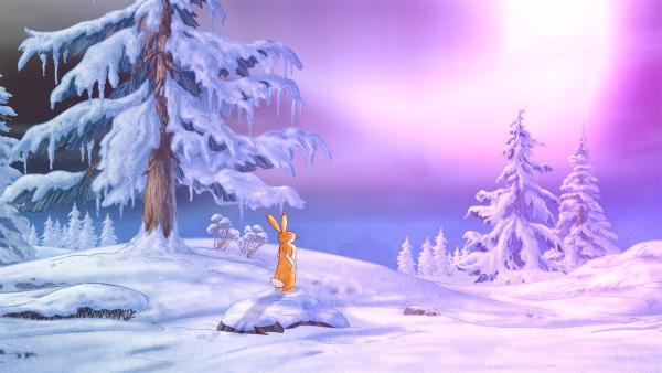 Der kleine Hase betrachtet den Himmel, der in besonderen Farben leuchtet. | Rechte: KiKA/SLR Productions Australia Pty.Ltd./Scrawl Studios Pte Ltd./hr/ARD
