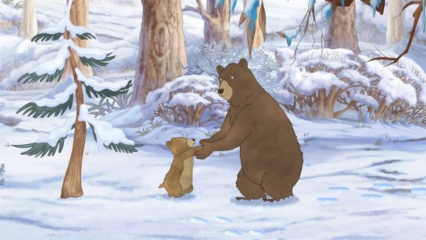 Der große und der kleine Braunbär suchen gemeinsam nach Futter. | Rechte: KiKA/SLR Productions Australia Pty. Ltd. / Scrawl Studios Pte Ltd.