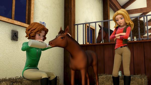 Kritisch beobachtet Wendy ihre Freundin beim Füttern des verwaisten Fohlens. Ob Bianca auch alles richtig macht? | Rechte: ZDF/Wendy and Associated Characters (c) WPL 2012