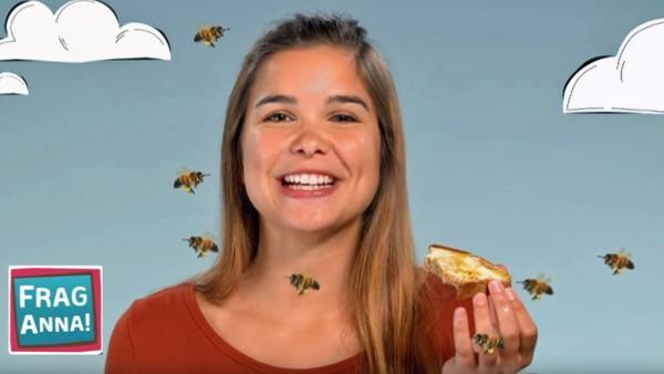 Eisbären, Bienen, Leoparden - Anna erklärt wie Bienen Honig machen | Bild: BR/TEXT + BILD Medienproduktion GmbH & Co. KG | Rechte: BR/TEXT + BILD Medienproduktion GmbH & Co. KG