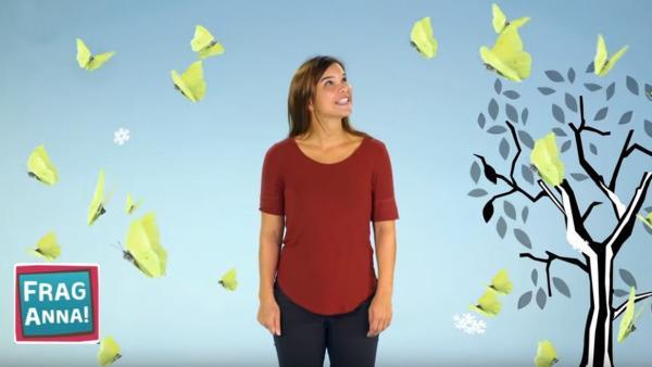 Anna erklärt, was Schmetterlinge im Winter machen. | Bild: BR/TEXT + BILD Medienproduktion GmbH & Co. KG | Rechte: BR/TEXT + BILD Medienproduktion GmbH & Co. KG