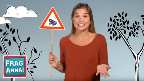 Termiten, Murmeltiere, Kröten - Anna beantwortet die Frage von Delta, warum Kröten wandern gehen. | Bild: br/text und bild | Rechte: br/text und bild