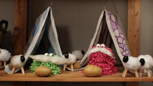Wisch und Mop übernachten mit selbstgebastelten Handtuch-Zelten im Kellerregal. | Rechte: NDR/Trikk17