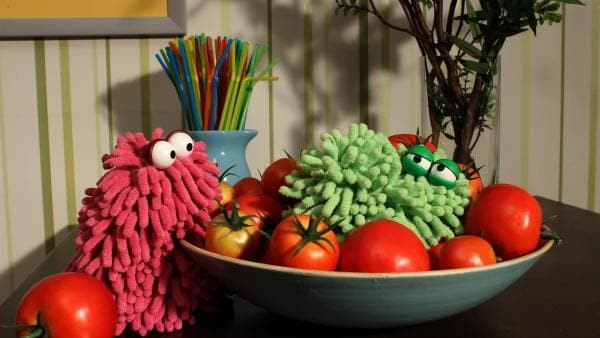 Mop hat sich ein besonders kniffliges Versteck ausgesucht: zwischen den Tomaten! | Rechte: NDR/Trikk17