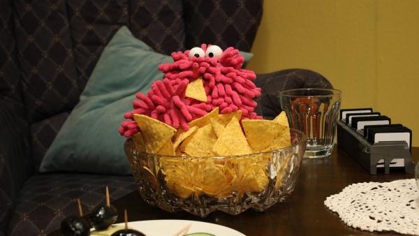 Wisch genießt Tortilla-Chips. | Rechte: NDR/Trikk17