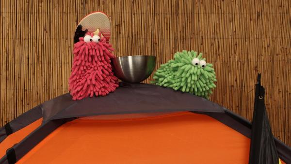 Wisch und Mop sitzen auf dem Zelt | Rechte: Trikk17 Foto: Trikk17