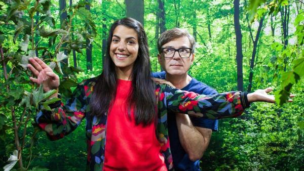 Ab in den Wald | Rechte: WDR