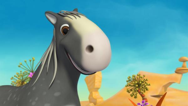 Pferd Herbert ist froh, wieder frei zu sein. | Rechte: ZDF/m4e
