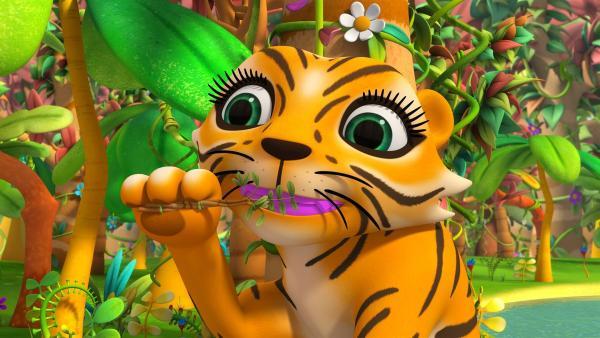 Tigerdame Stripes hat ein Problem: Ihre Zähne haben sich verfärbt.   Rechte: ZDF/m4e