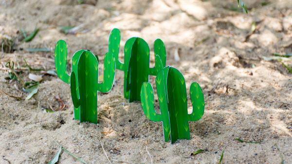 drei Kakteen aus Papier stehen im Sand | Rechte: KiKA