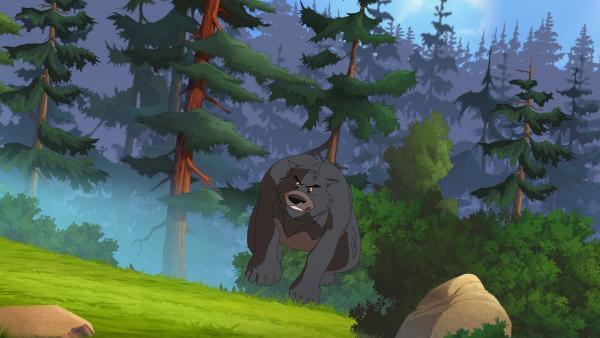 Der wütende Grizzly | Rechte: WDR/Ellipsanime Productions/Belvision/Les Cartooneurs Associés/2 Minute