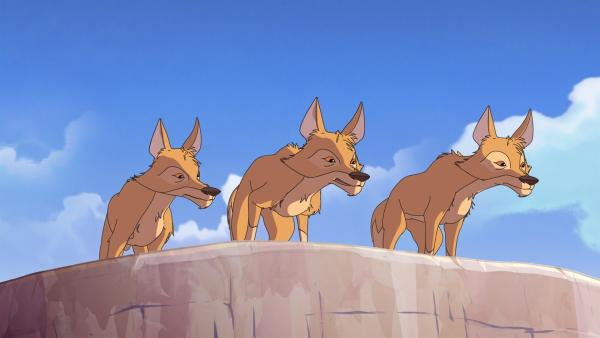 Die drei hungrigen Kojoten wollen das Fohlen jagen.    Rechte: WDR/Ellipsanime Productions/Belvision/Les Cartooneurs Associés/2 Minute