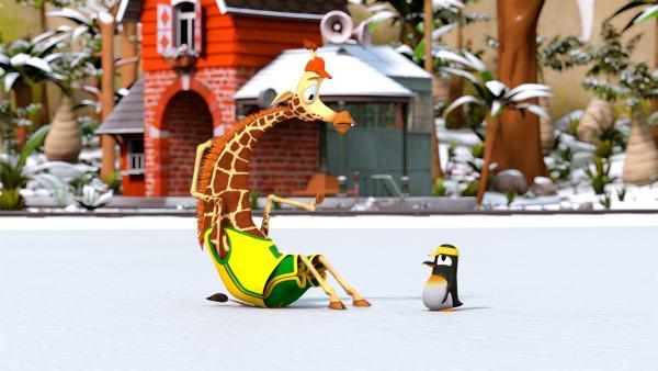 Bruno (li.) ist beim Eislaufen hingefallen und kommt nicht mehr auf die Beine. Pinguinmädchen Anni (re.) redet ihm gut zu.   Rechte: ZDF/Grid Animation