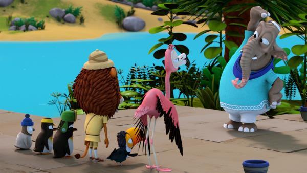 Frau Emily (Elefant) hat die Zoobande am frühen Morgen zu einem Fitnesstraining zusammengetrommelt. | Rechte: ZDF/Gaumont Animation