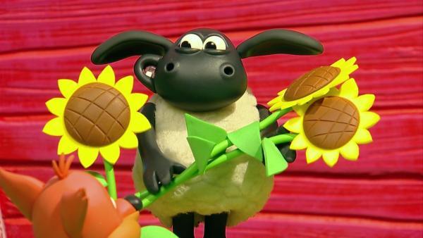 Timmy   Rechte: WDR/Aardman Animations