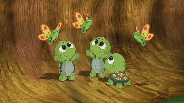 Mit Hilfe der Schmetterlinge können Zoé und ihre Freunde die Schildkröten-Babys wiederfinden. | Rechte: KiKA/Mike Young Productions