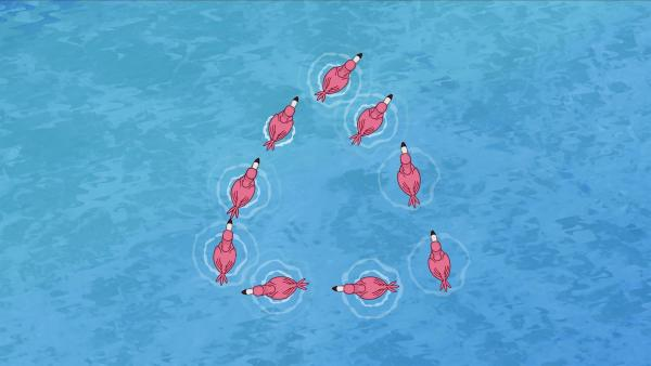 Flamingos, die im Dreieck schwimmen.   Rechte: KiKA/Mike Young Productions