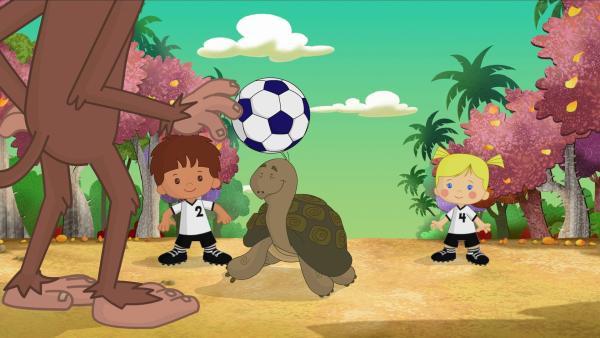 Finn, die Schildkröte Tess und Zoé spielen Fußball gegen drei Affen. | Rechte: KiKA/Mike Young Productions