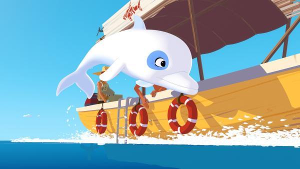 Zoom, der weiße Delfin, ist bei allen Abenteuern rund um die Insel Maotou im Pazifik mit dabei.   Rechte: ZDF/Media Valley/Marzipan Films/TF1/Gaumont Animation