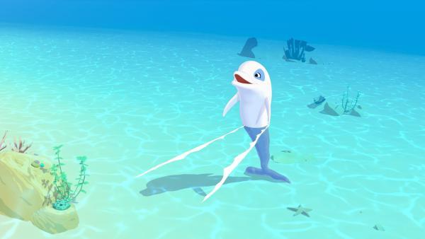 Zoom, der weiße Delfin, freut sich.   Rechte: ZDF/Media Valley/Marzipan Films/TF1/Gaumont Animation