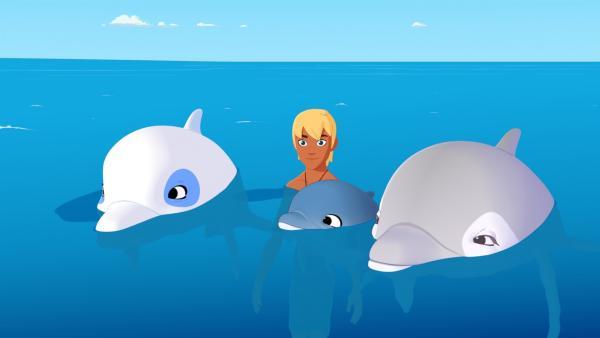 Yann und Zoom haben einen Baby-Delfin und seine Mutter entdeckt. Zoom ist begeistert über seine neuen Freunde, Yann dagegen ein wenig eifersüchtig. | Rechte: ZDF/Media Valley/Marzipan Films/TF1/Gaumont Animation