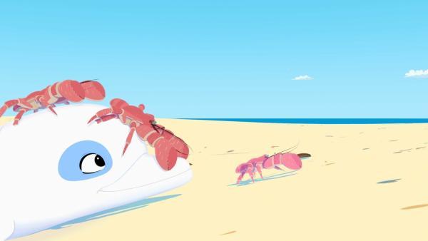 Zoom bringt die Kokosnuss-Krabben ans rettende Ufer.   Rechte: ZDF/Media Valley/Marzipan Films/TF1/Gaumont Animation