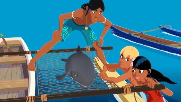 Ein kleiner Delfin (mittig) liegt geschwächt auf einem Netz eines Bootes, die Freunde Auru, Yann und Timeti stehen um ihn herum und schauen sich besorgt an. | Rechte: Media Valley/Marzipan Films - 2020